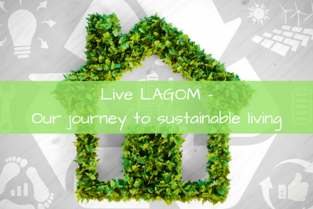 Live LAGOM sustainable living
