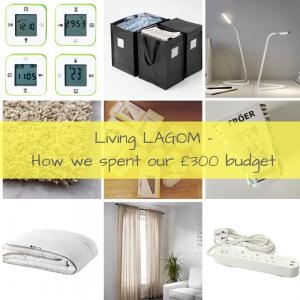 live lagom budget post